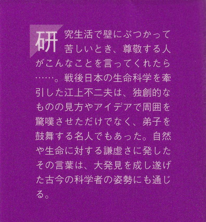 IMG_20131006_0001